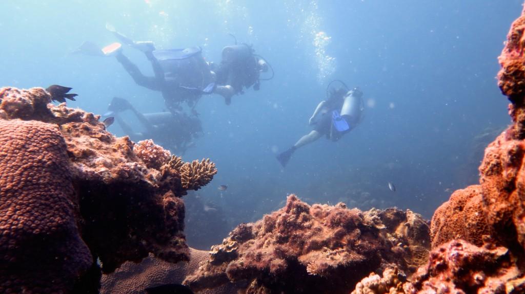Koh Tao, Plongée sous-marine, Nous à -12m :-)