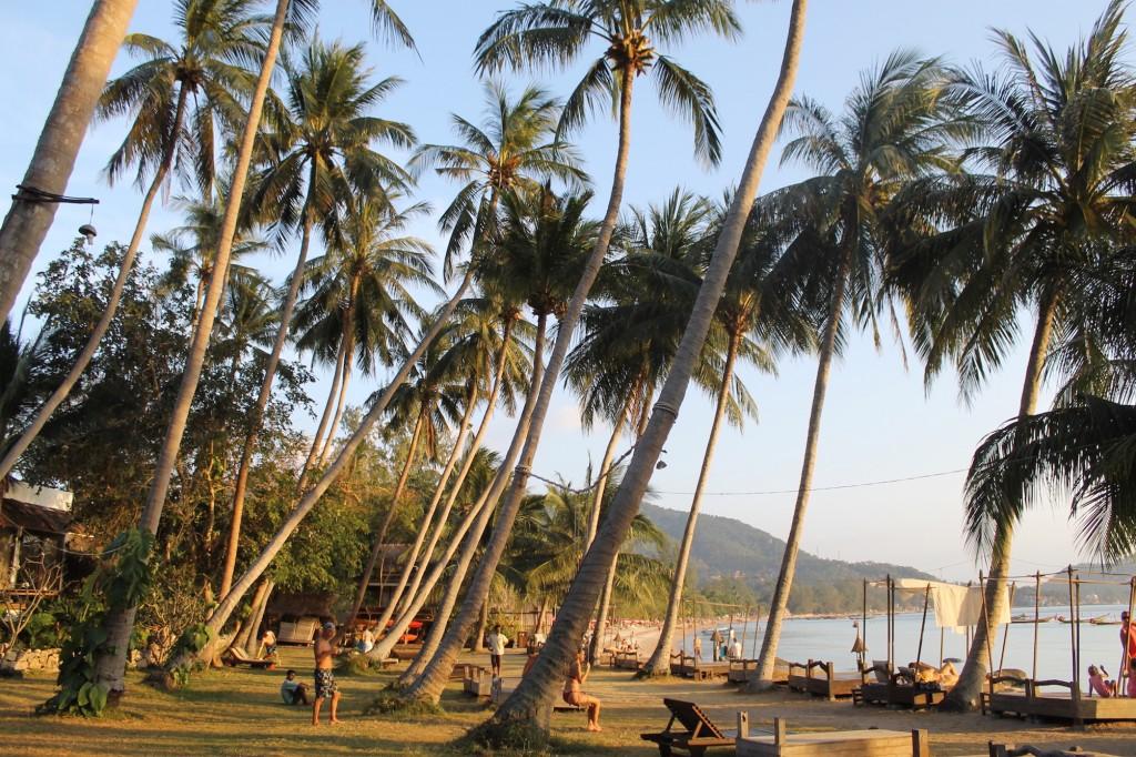 Koh Tao, Koh Tao Cabana