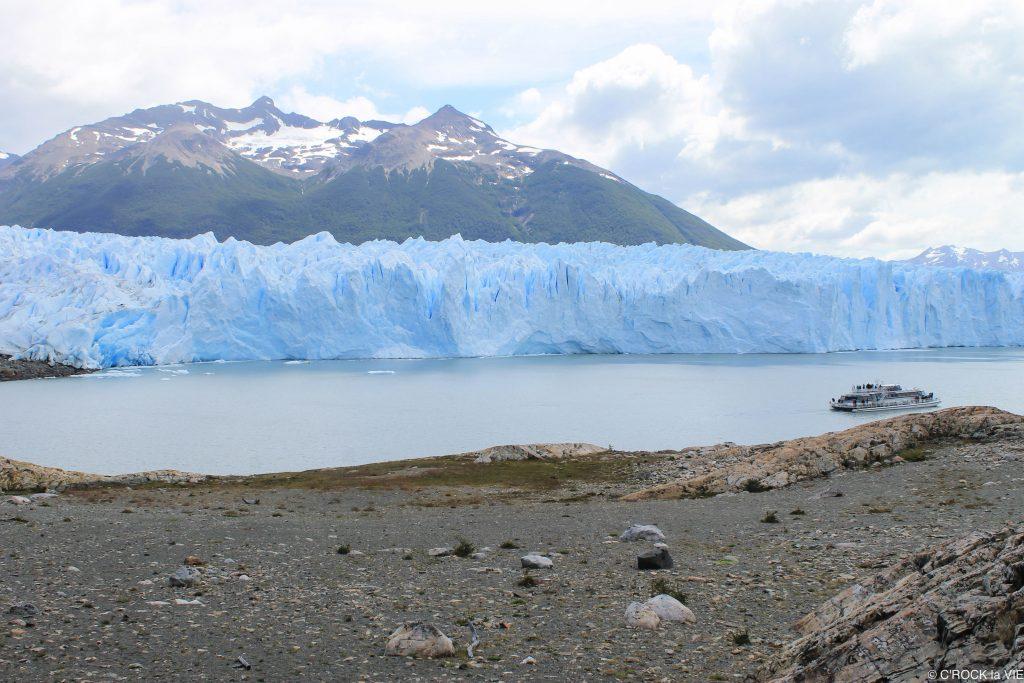 Argentine 6